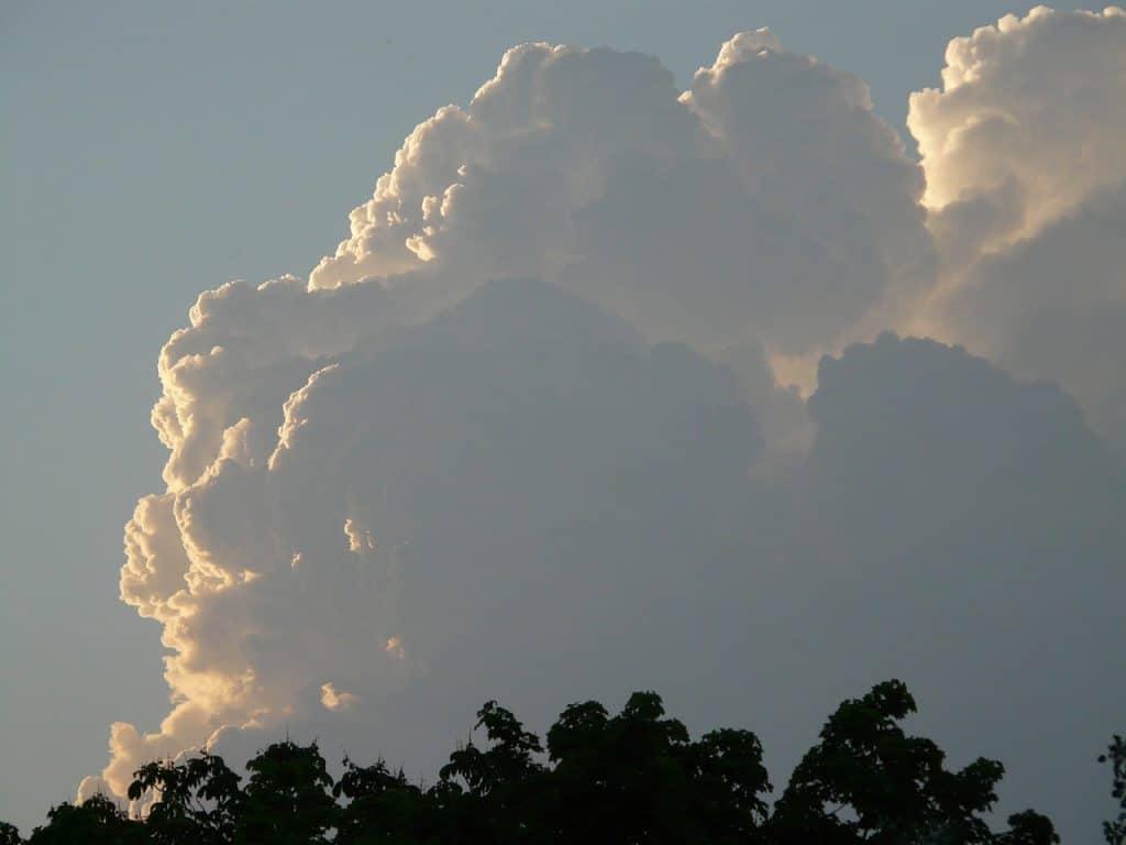 Um céu com uma nuvem gigante e algumas árvores.