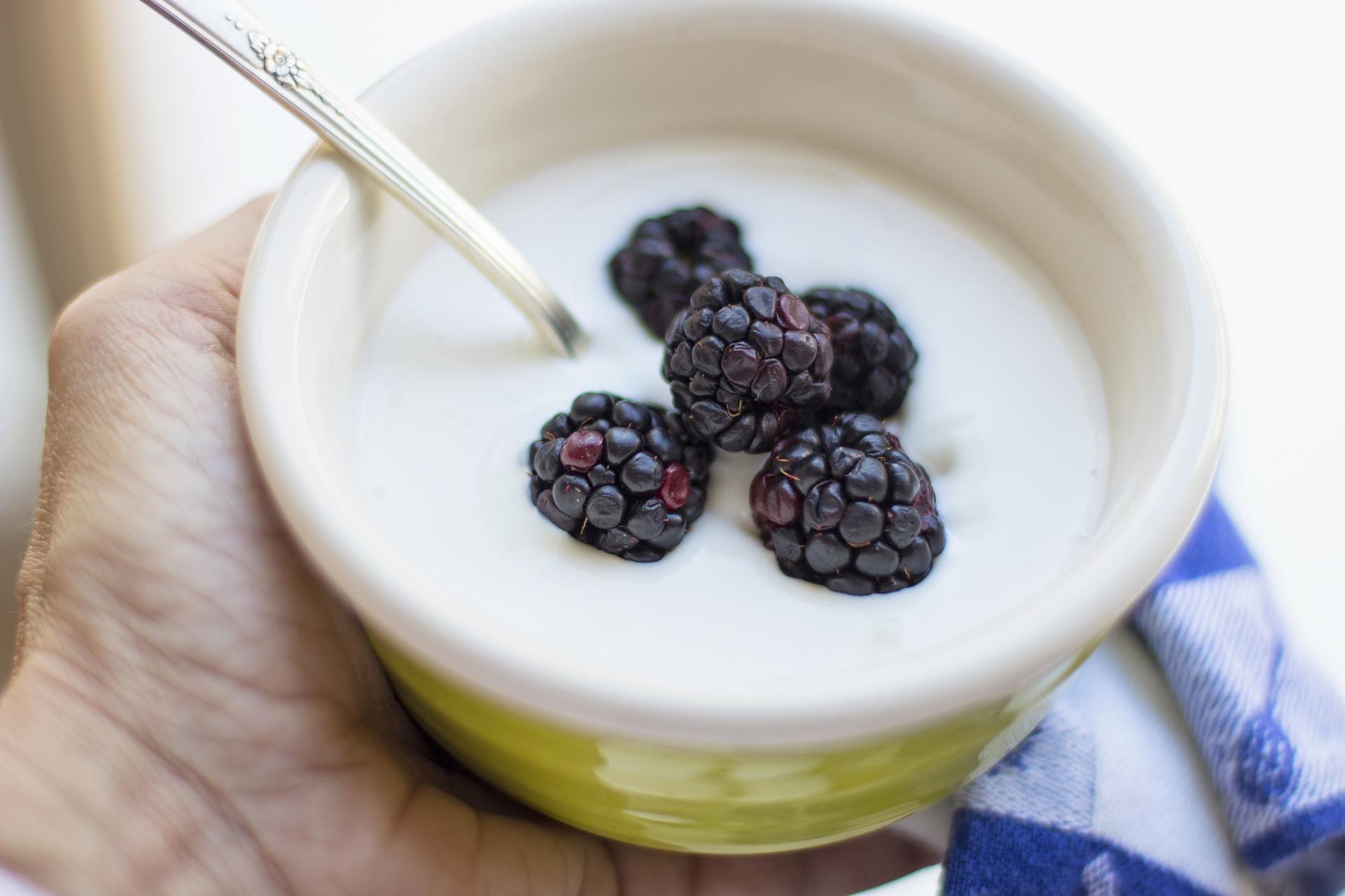 Iogurteira: Descubra como escolher o melhor modelo em 2020
