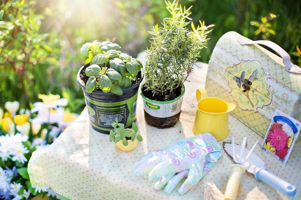 Imagem de vasos com plantas, para de luvas, pazinha e rastelo