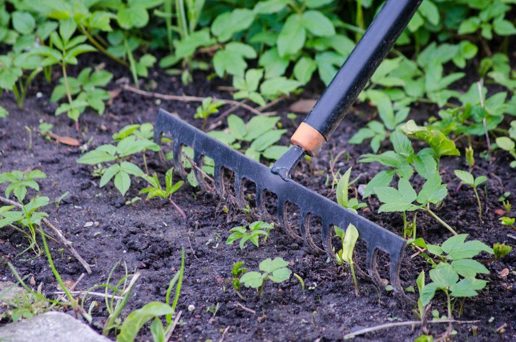 Imagem de pessoa trabalhando no jardim com auxílio de um ancinho