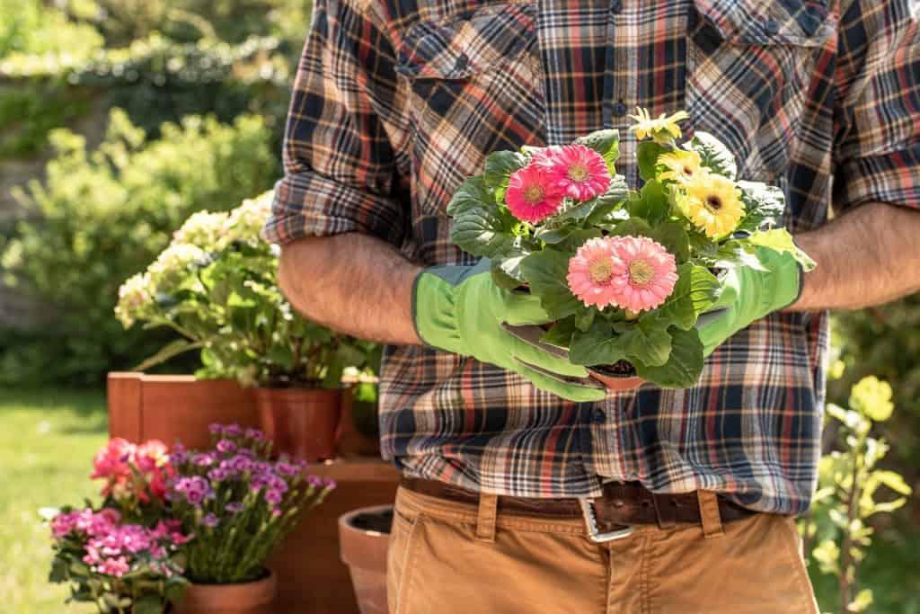 Na foto um homem de camisa xadrez segurando algumas flores com um jardim ao fundo.