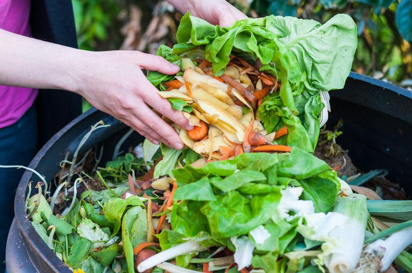 Imagem de pessoa jogando restos orgânicos em uma composteira doméstica