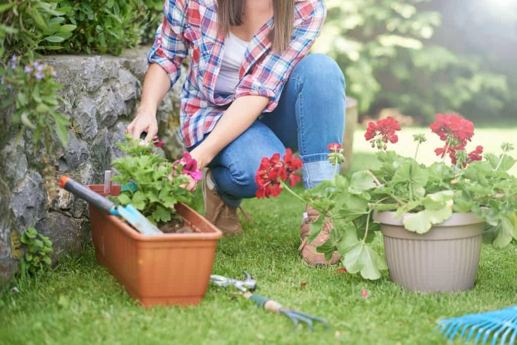 Imagem de mulher plantando flores.