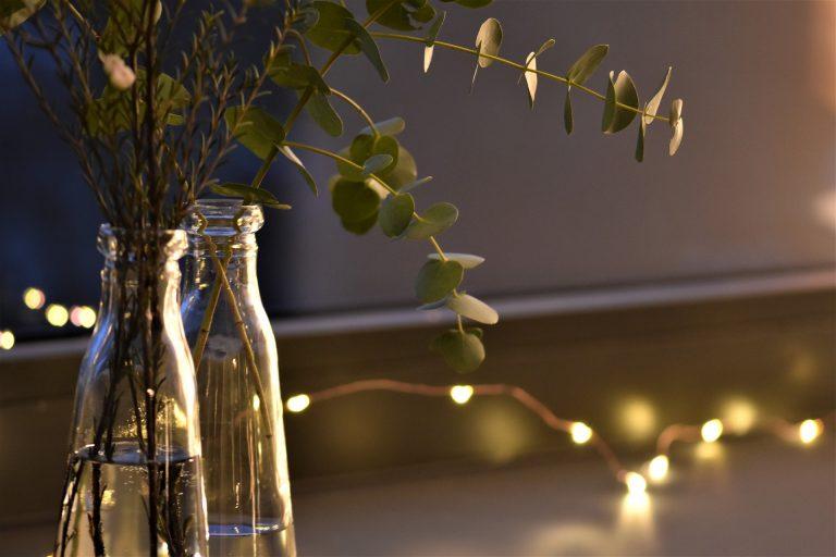 Imagem de cordão de luz com destaque para vasos com plantas