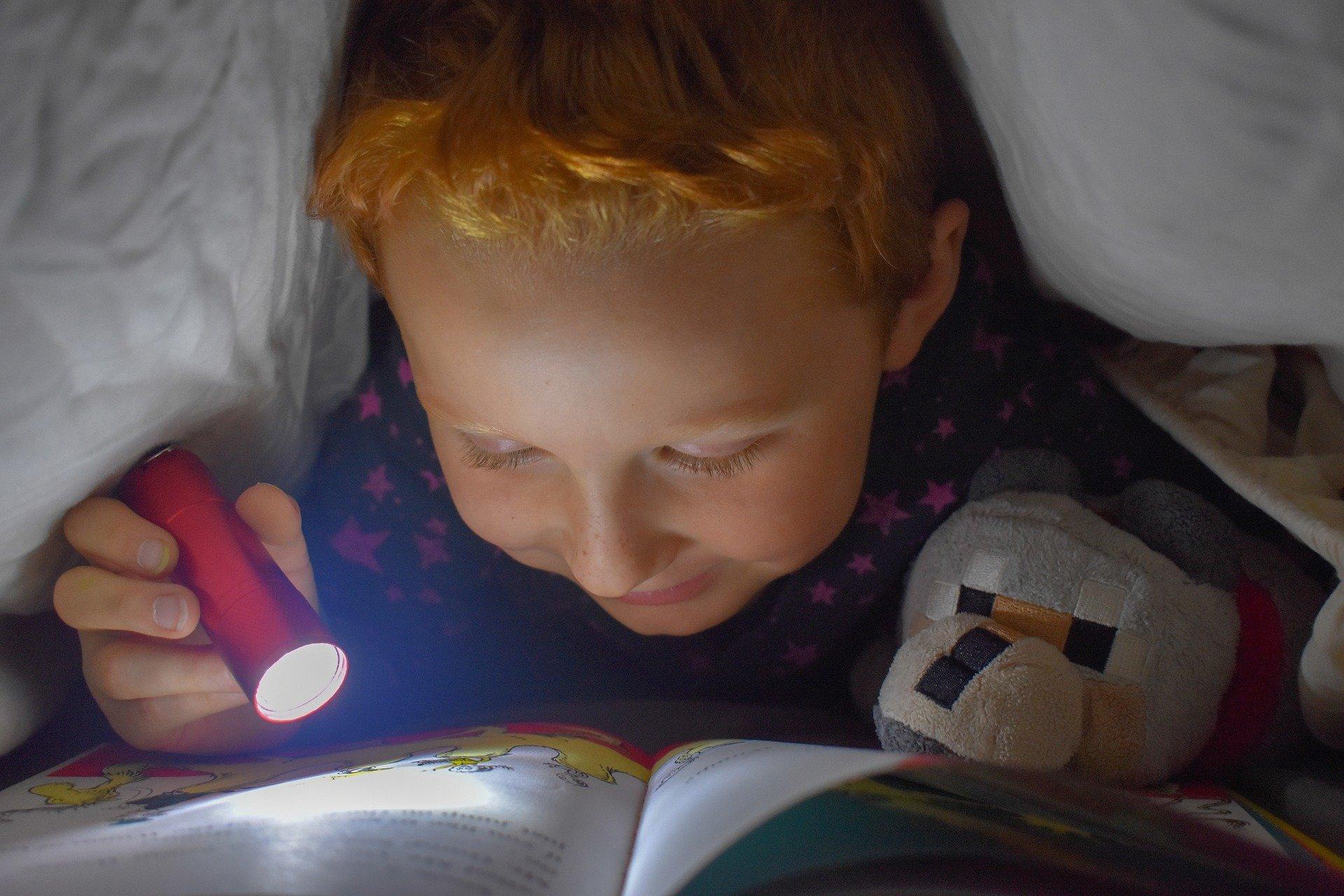 Na foto um menino embaixo das cobertas lendo um livro com uma lanterna na mão.